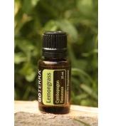 Lemongrass - citrónová tráva